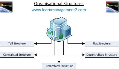 Diagram Showing different types of organisational structures