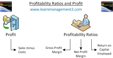Profit and Profitability Ratios Diagram