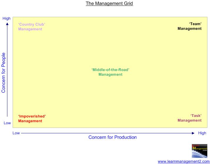 Diagram Showing The Management Grid
